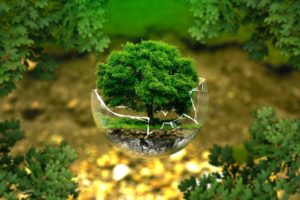 dampfreiniger umweltschonend